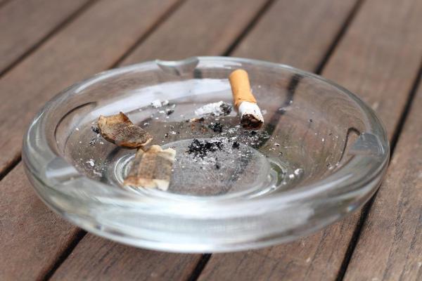 10 coisas comuns que podem matar o seu gato - 5. O fumo do tabaco