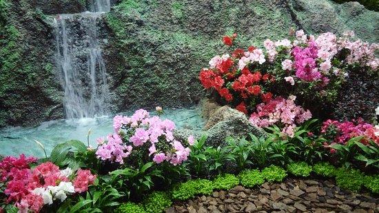 Foto tirada na Feira das flores realizada em setembro no Parque. - Parque  Edmundo Zanoni, Atibaia - Tripadvisor