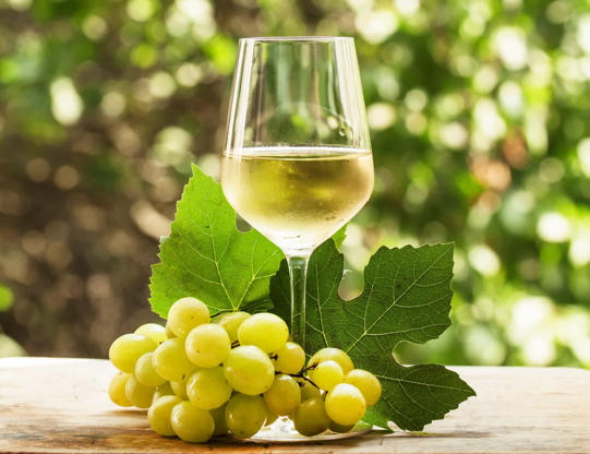 Slide 7 de 30: Descrição: fortes aromas florais, ricos em acidez. Esse tipo de vinho, de casta de uva branca, pode ser doce ou seco.